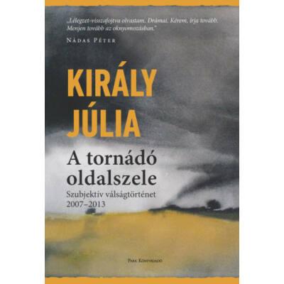 A tornádó oldalszele - Szubjektív válságtörténet (2007-2013) (Király Júlia)